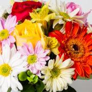 flores arranjo gerbera margarida astromelia rosa 6_1