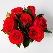 flores arranjo rosas vermelhas nacional 2
