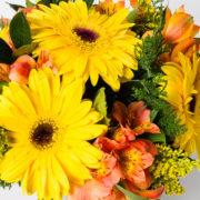flores atromelia gerbera amarela vaso 3_1