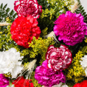 flores buque cravos colorido 2_1