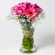 flores gerbera rosa margarida pink no vaso 1