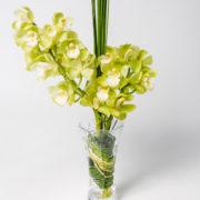 flores orquidea amarela vaso 1