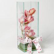 flores orquidea rosada no vaso 1