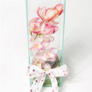 flores orquidea rosada no vaso 3